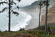 Explore Pacific Ocean beaches and sea cliffs at Patrick's Point State Park, 25 miles (40 km) north of Eureka, California, USA.