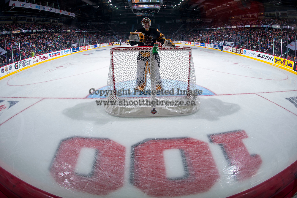 REGINA, SK - MAY 21: Kaden Fulcher #33 of Hamilton Bulldogs stands in net against the Swift Current Broncos at the Brandt Centre on May 21, 2018 in Regina, Canada. (Photo by Marissa Baecker/CHL Images)