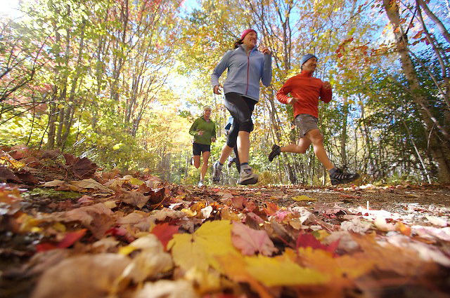 Group run in Arcadia National Park in Maine with fall colors in the trees and on the trail floor
