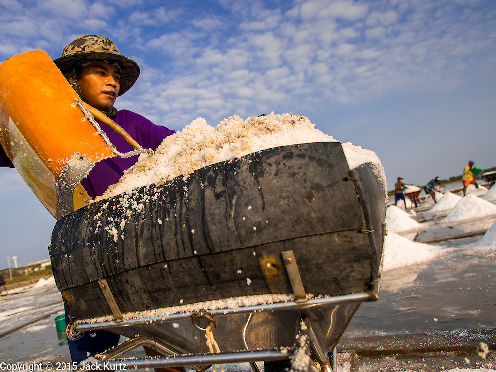 09 MARCH 2015 - NA KHOK, SAMUT SAKHON, THAILAND: Burmese migrant workers load salt into a wheelbarrow on a salt farm near Samut Sakhon, Thailand, during the salt harvest. The coastal provinces of Samut Sakhon and Samut Songkhram, about 60 miles from Bangkok, are the center of Thailand's sea salt industry. Salt farmers harvest salt from the waters of the Gulf of Siam by flooding fields and then letting them dry through evaporation, leaving a crust of salt behind. Salt is harvested through dry season, usually February to April. The 2014 salt harvest went well into May because the dry season lasted longer than normal. Last year's harvest resulted in a surplus of salt, driving prices down. Some warehouses are still storing salt from last year. It's been very dry so far this year and the 2015 harvest is running ahead of last year's bumper crop. One salt farmer said prices are down about 15 percent from last year.    PHOTO BY JACK KURTZ