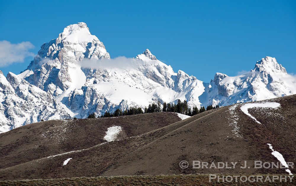 Snow is melting off the lowlands in Grand Teton National Park, including Blacktail Butte just east of Moose, but a near-record snowpack still covers the high peaks of the Teton Range. Wildlife migrations continue and grizzly bears have begun wake from hibernation as spring slowly emerge in Jackson Hole.