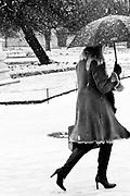 Paris, France. 7 Decembre 2010<br /> Jardin des Tuileries (1er Arrondissement)<br /> Paris, France. December 7th 2010<br /> Jardin des Tuileries (1st Arrondissement)
