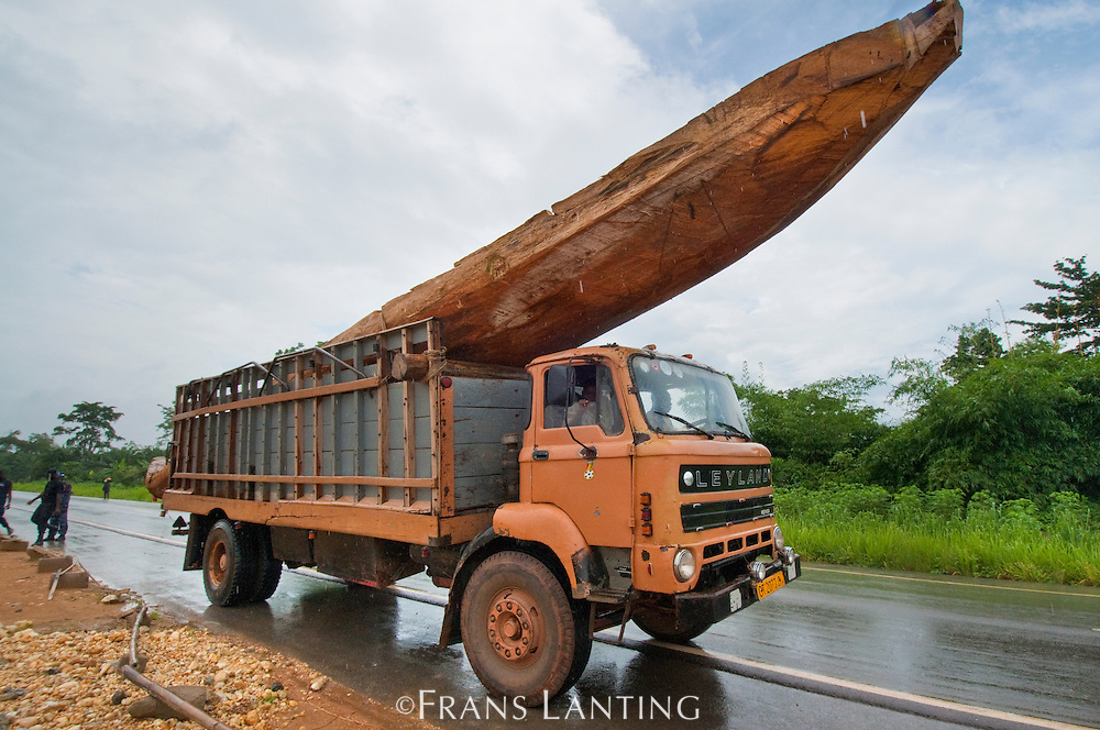 Truck  with large dugout canoe headed for the coast, Atobiase, Ghana