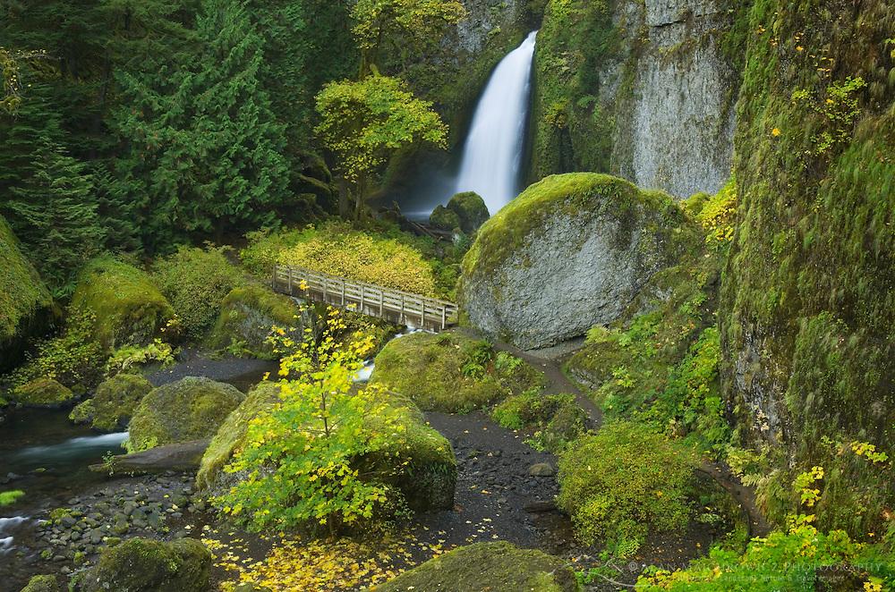 Wachlella Falls, Columbia River Gorge National Scenic Area Oregon