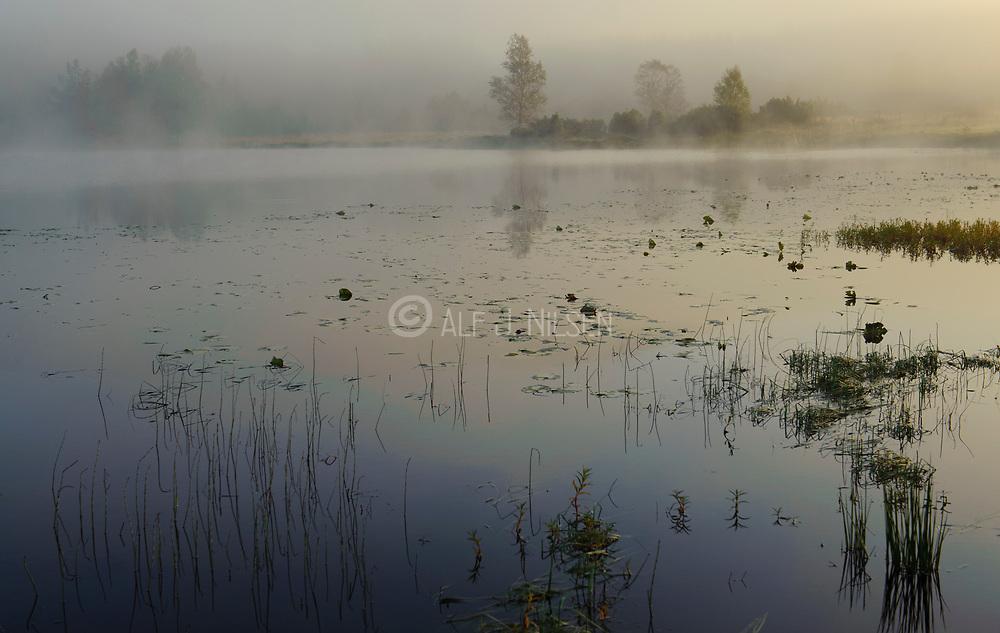 Foggy September morning at Haugatjörna, Haestad close to Ualand, Rogaland county, Norway.