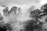 Morning mist in the Lythe Valley, Windermere. Scenic/travel photography for Cumbria Tourism publications.
