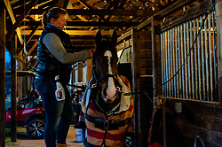 March 22, 2019 - Raeford, North Carolina, US - March 23, 2019 - Raeford, N.C., USA - COURTNEY CARSON braids the mane of BAY MAX as the day gets started at the sixth annual Cloud 11-Gavilan North LLC Carolina International CCI and Horse Trial, at Carolina Horse Park. The Carolina International CCI and Horse Trial is one of North AmericaÃ•s premier eventing competitions for national and international eventing combinations, hosting International competition at the CCI2*-S through CCI4*-S levels and National levels of Training through Advanced. (Credit Image: © Timothy L. Hale/ZUMA Wire)