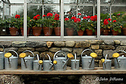 watering cans with flowers in background