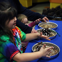 Libby Ezell | BUY AT PHOTOS.DJOURNAL.COM<br /> Aryana Hajek, 6 makes a pinecone birdfeeder Saturday at Healthworks 7th Birthday
