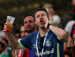 June 17, 2018 - Moscow, Russia - June 17, 2018, Russia, Moscow, FIFA World Cup, First round, Group F, Germany vs Mexico at the Luzhniki stadium. Fan (Credit Image: © Russian Look via ZUMA Wire)