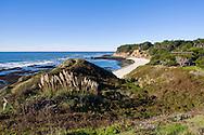 Tidal flats and coastal grasses, California Coast