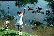 Sisters age 3 and 5  feeding geese at Loring Park.  Minneapolis Minnesota USA