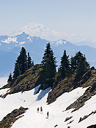 Glacier Peak rises to the southeast of Sauk Mountain, which an easy day hike of 4 miles round trip and 1100 feet vertical gain on a graded zig zag trail, near the town of Concrete, Washington, on State Route 20, the North Cascades Highway, USA. Glacier Peak, which rises to elevation 10,541 feet in Glacier Peak Wilderness, is the most isolated of the five major stratovolcanoes (composite volcanoes) of the Cascade Volcanic Arc in Washington. Glacier Peak formed during the Pleistocene epoch (about 1 million years ago) and is one of the most active of Washington's volcanoes, erupting explosively five times in the past 3,000 years.