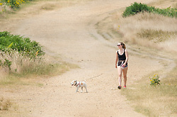 © Licensed to London News Pictures. 04/07/2018. London, UK. A women walks her dog through the scorched dry landscape in Richmond Park as the heatwave continues. Photo credit: Peter Macdiarmid/LNP