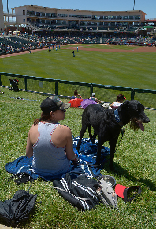 gbs052117h/SPORTS -- Sammie Reynolds of Albuquerque and her giant schnauzer mix, Noodles, at the Bark in the Park event during the game at Isotopes Park on Sunday, May 21, 2017. (Greg Sorber/Albuquerque Journal)