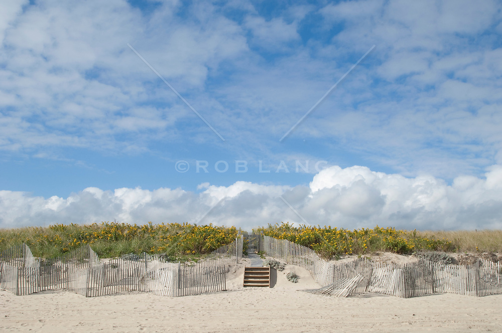 Dunes and fence on a sunny day in East Hampton, NY