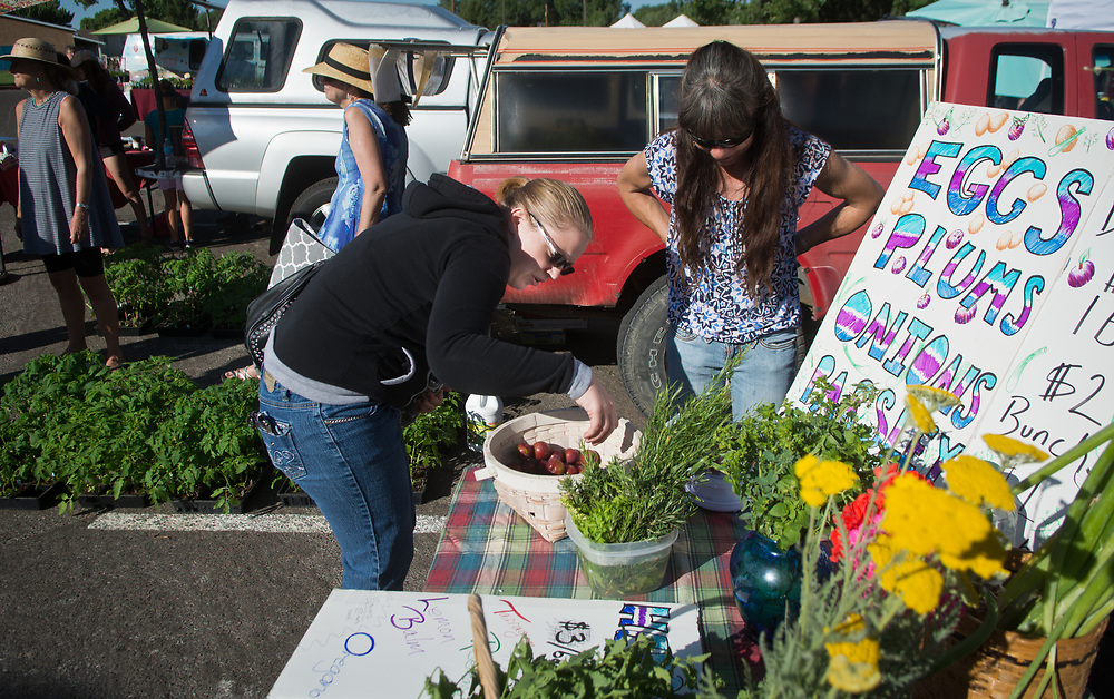 "mkb060317g/living/Marla Brose --  Sarah Lucero buys plums from Crystal Western Ford at the Los Ranchos Growers' Market, Saturday, June 3, 2017. ""It's amazing how many people you can feed from what you grow in your backyard,"" said Western Ford, who grows food in her North Valley backyard. The market is in its 25th season. (Marla Brose/Albuquerque Journal)"
