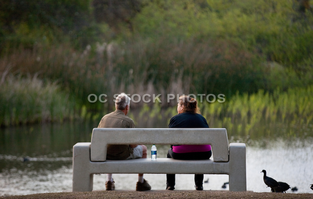 Relaxing on a Park Bench in Central Park Huntington Beach California