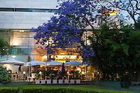 BAR EXTERNO DEL MUSEO DE ARTE MODERNA MALBA Y ARBOLES DE JACARANDA FLORECIDOS, BARRIO DE PALERMO, CIUDAD DE BUENOS AIRES, ARGENTINA (PHOTO © MARCO GUOLI - ALL RIGHTS RESERVED)