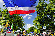 16 MAY 2014 - BANGKOK, THAILAND: An anti-government protestor waves a Thai flag in front of the Thai parliament complex. Thousands of protestors from the People's Democratic Reform Committee (PDRC) surrounded the Thai Parliament complex Saturday to pressure the Thai Senate to select an interim Prime Minister to replace ousted former PM Yingluck Shinawatra. The Senate decided not to appoint an interim PM of their own and announced a meeting with the current interim Prime Minister. The protestors left the parliament complex and threatened to return in larger numbers if the Senate doesn't act. The Senate appointment of an acting PM could plunge Thailand into chaos since there is already an interim Prime Minister from the ruling Pheu Thai party.     PHOTO BY JACK KURTZ