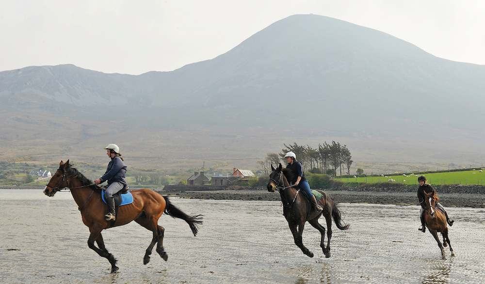 Horse & Pony Treking at Bertra Beach, Clewbay, Co.Mayo Ireland. Pic: Michael Mc Laughlin