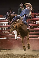 Bareback rider Blayne Nordvold rides Mosbrucker Rodeo's -146 Cowboy Fever during the Bismarck Rodeo on Saturday, Feb. 3, 2018. He had a no score on the ride. More photos of each run are available at Bobwire-S.com.