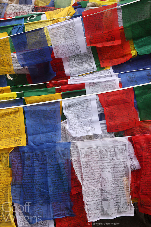Buddhist prayer flags on Taglang La Pass one of the highest roads in the world, Ladakh, India