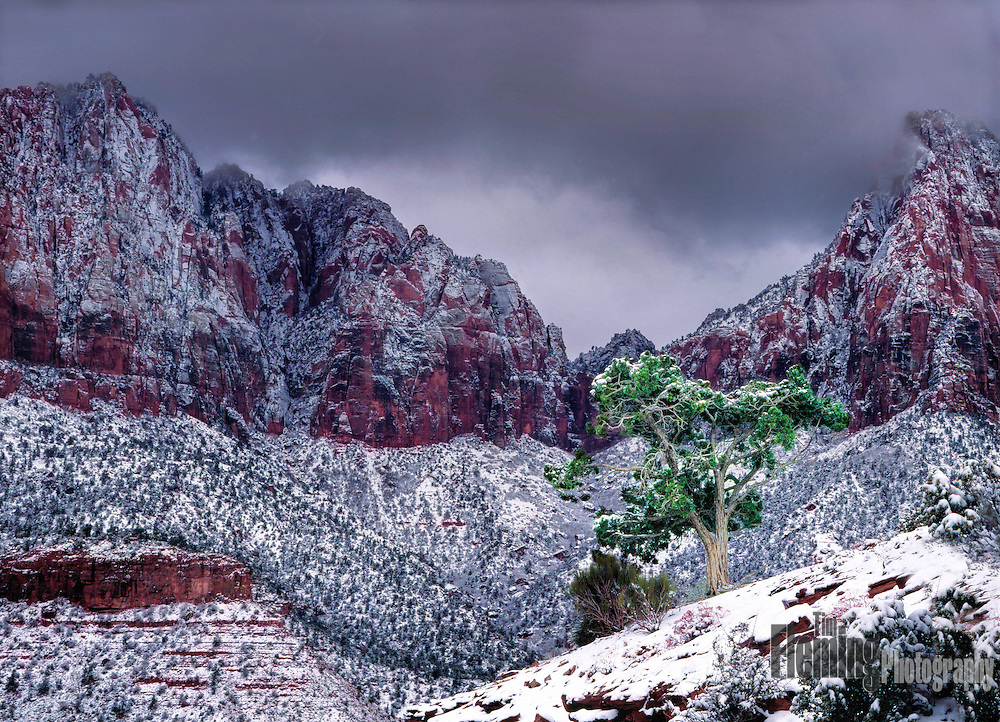 An approaching winter storm in Zion National Park, Utah