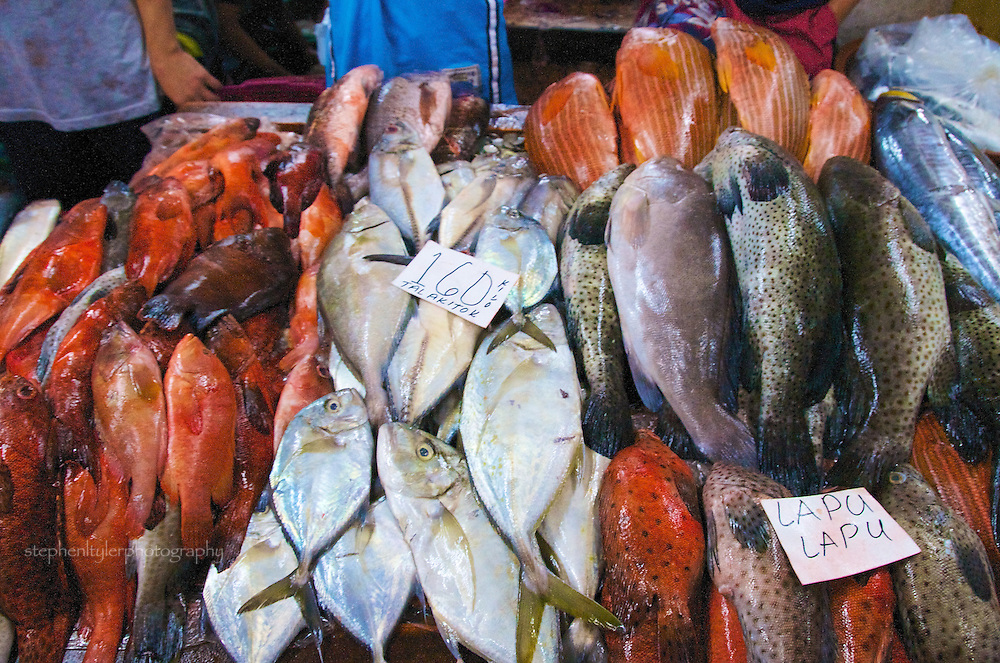 "A wide variety of fresh fish made available at the Fisherman's Wharf in Paranaque City at 3 AM, where the fresh catch is bought & sold based on ""whispered"" prices."