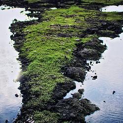 Sky reflecting off water in the Waikoloa Anchialine Ponds Preservation Area, Kohala Coast, Hawaii.