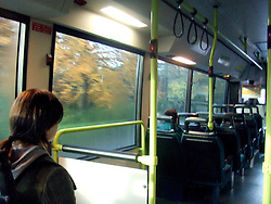 The Inside of the Bus