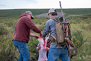Bernie McGowan, (left) and the author help bag caribou meat during Heidi Anderson's subsistence hunt caribou.