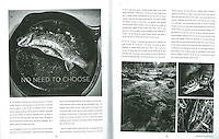 I am honored to have a photoessay published in the first ever Tenkara Magazine in 2013 about how the Tenkara style of fly fishing melds perfectly with my photography.