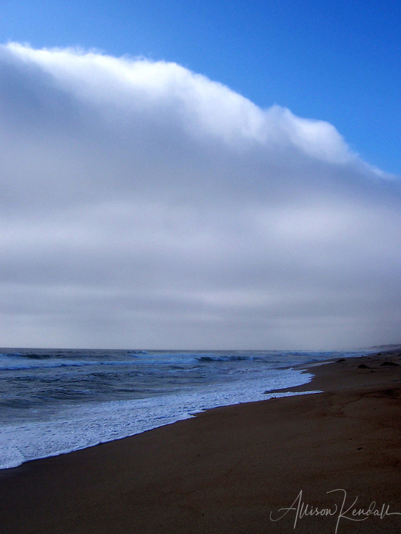 A thick bank of fog lies along the beaches of Monterey Bay, California