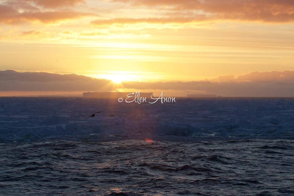 sunrise over iceberg, South Georgia Island