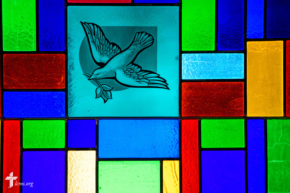Stained glass depicting the Holy Spirit with a dove and olive branch Zion Lutheran Church, Worms, Neb., on Saturday, Sept. 23, 2017. LCMS Communications/Erik M. Lunsford
