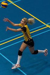 09-04-2016 NED: SV Dynamo - Flamingo's 56, Apeldoorn<br /> Flamingo's doet een goede stap naar het kampioenschap in de Topdivisie. Dynamo wordt met 3-0 verslagen /