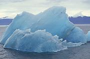 Iceberg, Inside Passage, Alaska<br />