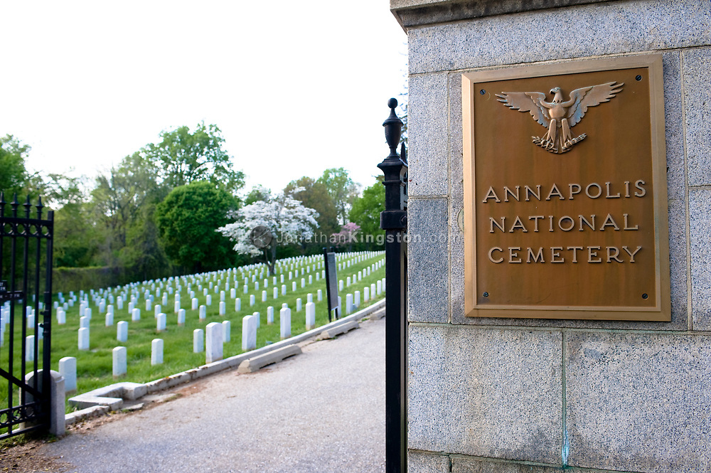 A view of the entrance gate and rows of white gravestones and a dogwood tree in bloom in the spring at the Annapolis National Cemetery, Annapolis, Maryland. The Annapolis national cemetery was established by Abraham Lincoln in 1862.  Soldiers from the civil war more to modern conflicts are interned here, however the cemetery is closed to new internments.  The total number of internments as of 2007 is 2995.