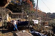 Chonhakdong . traditional Confucianist village. in Chirisan park  Seoul  Korea   Chonhakdong village traditionnel confucianiste dans le parc Chirisan  Chonhakdong  coree  ///R20131/    L0006920  /  R20131  /  P104905