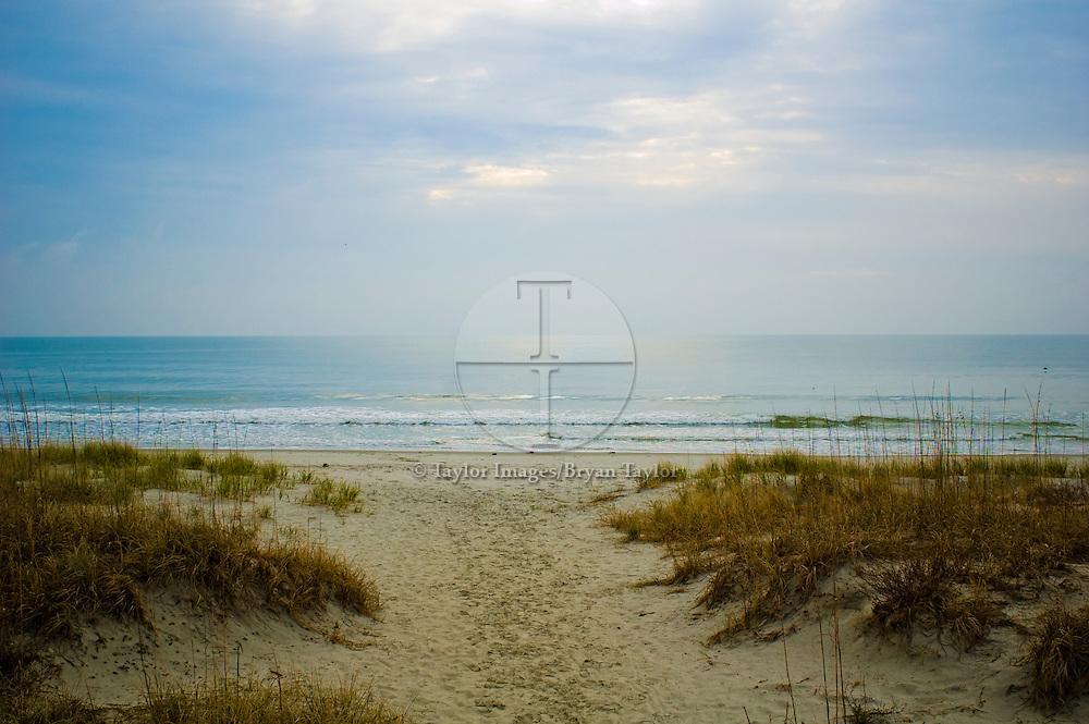 Sandy path to gentle morning surf in Pawleys Island, South Carolina.