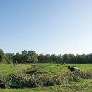 Nederland Rotterdam Deelgemeente prins alexander 14-10-2007 20071014 Foto: David Rozing ..Ommoord, Ommoordse veld, groene deelgemeente, vrouw met kinderwagen wandelt in park, recreatie.Deelgemeente Prins Alexander is het op 1 na diepst / laag gelegen gebied in Nederland, het laagste punt in de deelgemeent is  6,67 meter beneden NAP. Prins Alexander, second deepest area in the Netherlands, deepest point in this area, below sealevel: - 6,67m NAP...Foto: David Rozing