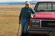 Sheep herder, rancher, after sheep shearing, Belle Fourche, South Dakota