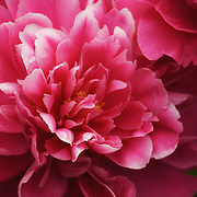 &quot;Welcome to Spring&quot;2<br />