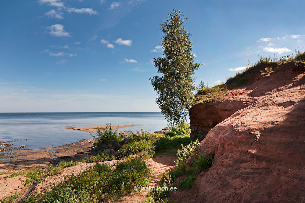 Red Kallaste sandstone outcrop at lake Peipsi in Estonia. Water, lakeside.