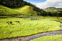 Paisagem rural no distrito de Santa Isabel. Águas Mornas, Santa Catarina, Brasil.