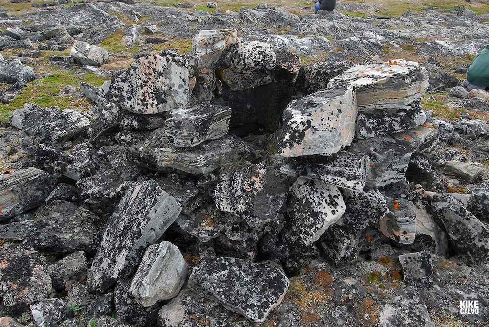 Opingivik Island. Baffin Island South. Evidence found nearby show that the Thule culture, ancestors of todays inuits lived here. , Fox trap