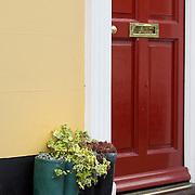 Ivy growing in wellington boots, front door, Sandwich, Kent, England