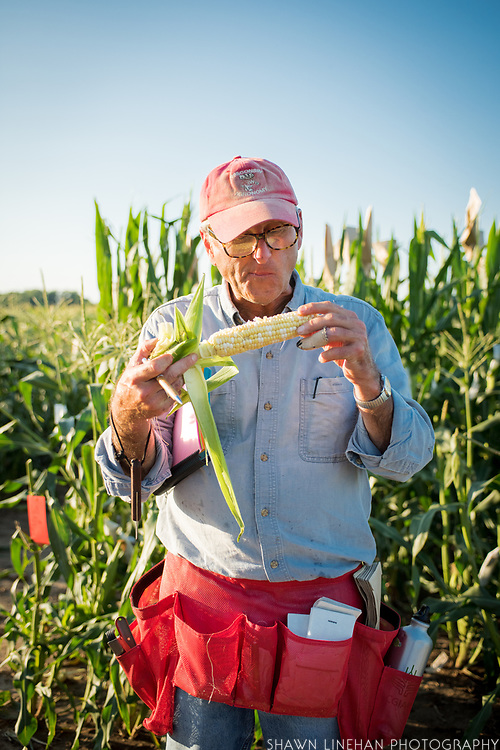 Bill Tracy has been researching sweet corn for 40 years, 30 of them at the University of Wisconsin Madison. He says he tastes hundreds of corn each season.