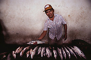 A fish vendor with his fish in the municipal market, Campeche, Mexico.